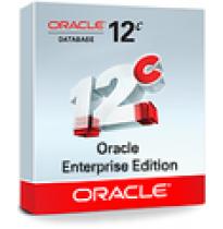 Oracle Database 12c Enterprise Edition